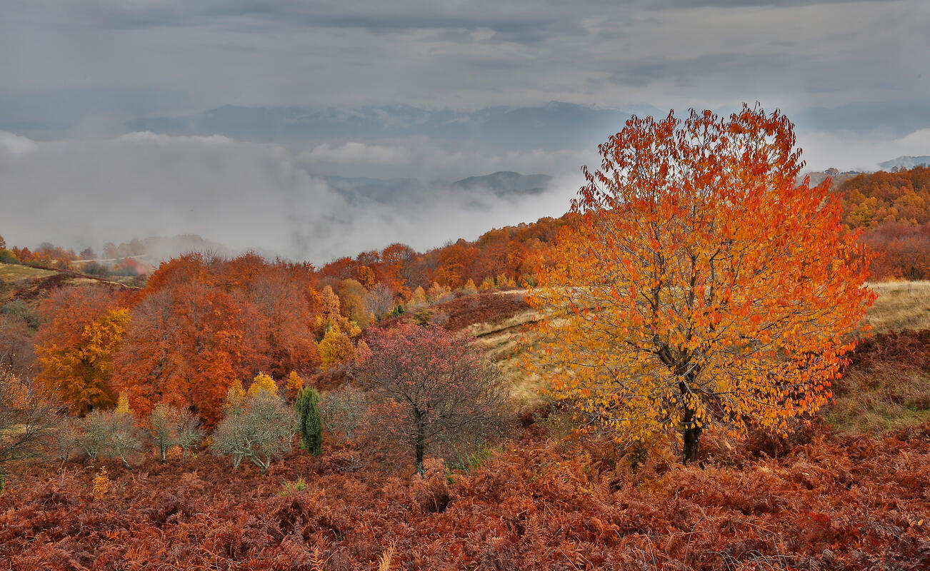 Bulgaria in autumn colors – landscape photography