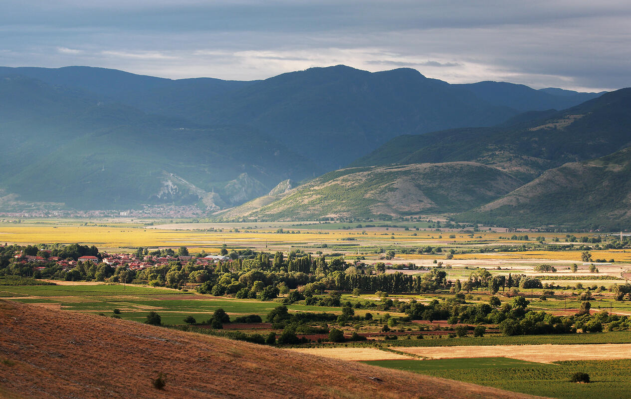 lowlands with Rodopi mountain background